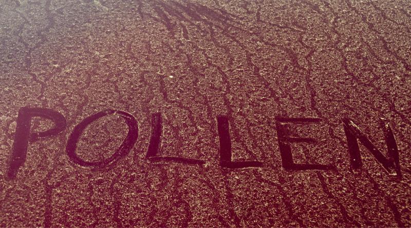 Pollen Hate Crime