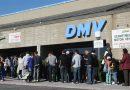 California DMV Licensed 800,000 Undocumented Immigrants Under 2-year-old Law